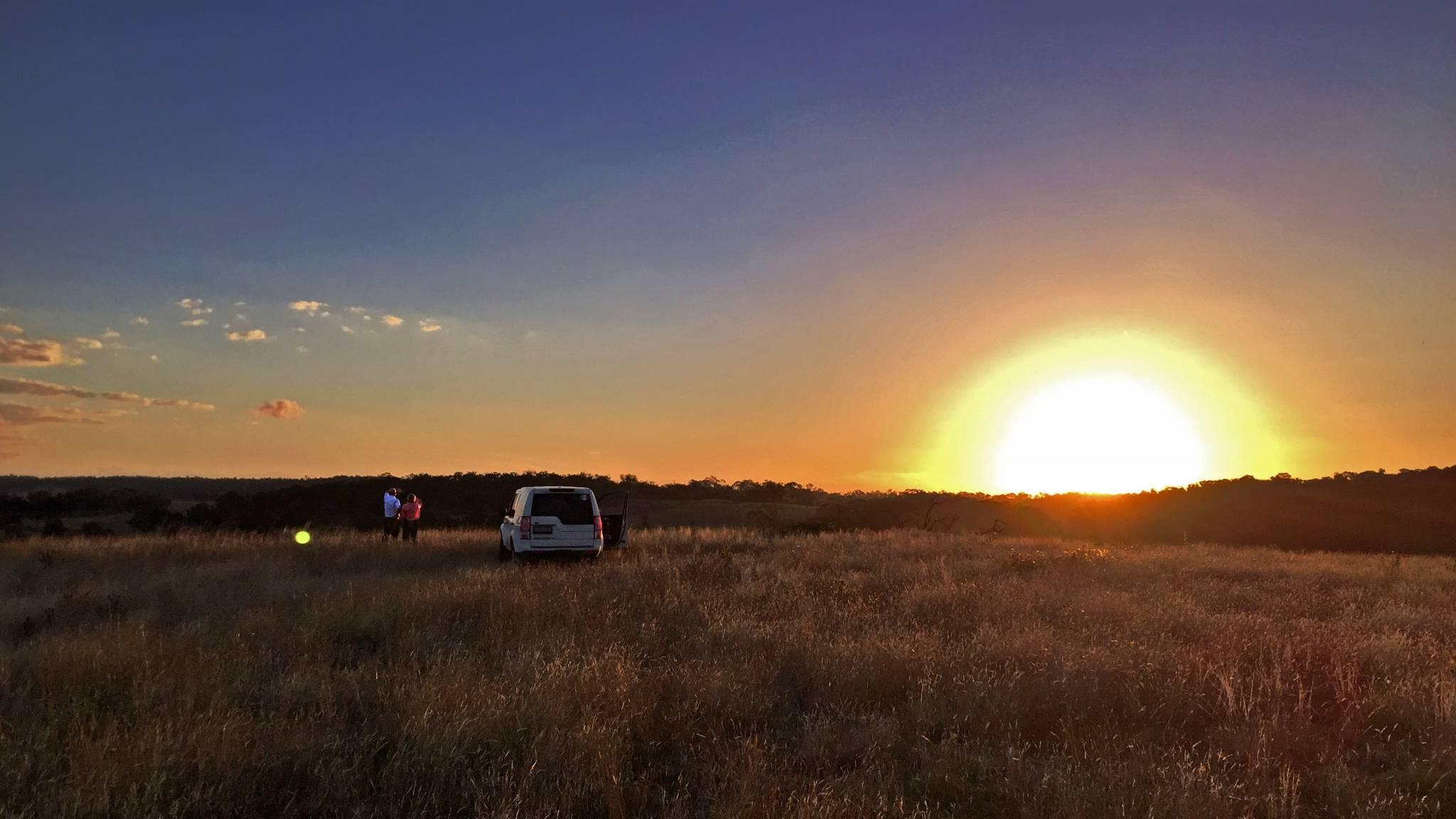 Sunrise Pasture