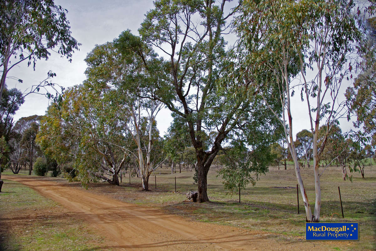 Kellys Plains Road
