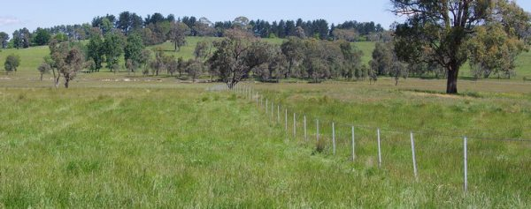 Having clear boundaries is essential when subdividing rural property